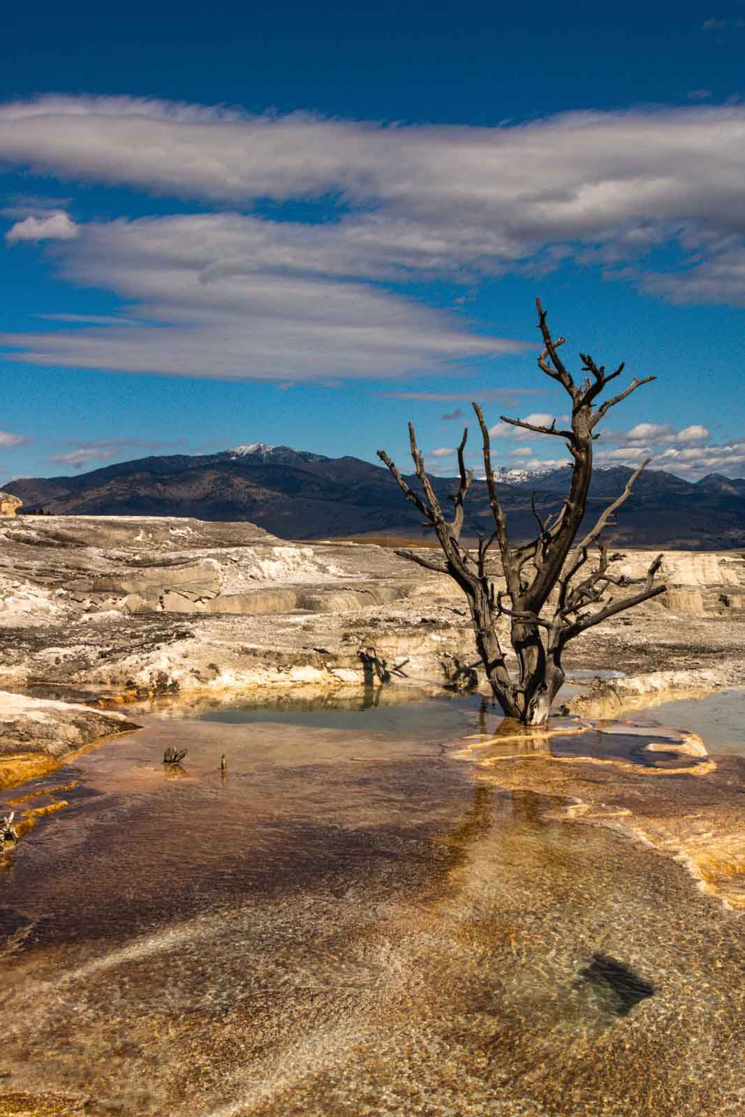 A view of Mammoth - one of the many things to do in Yellowstone