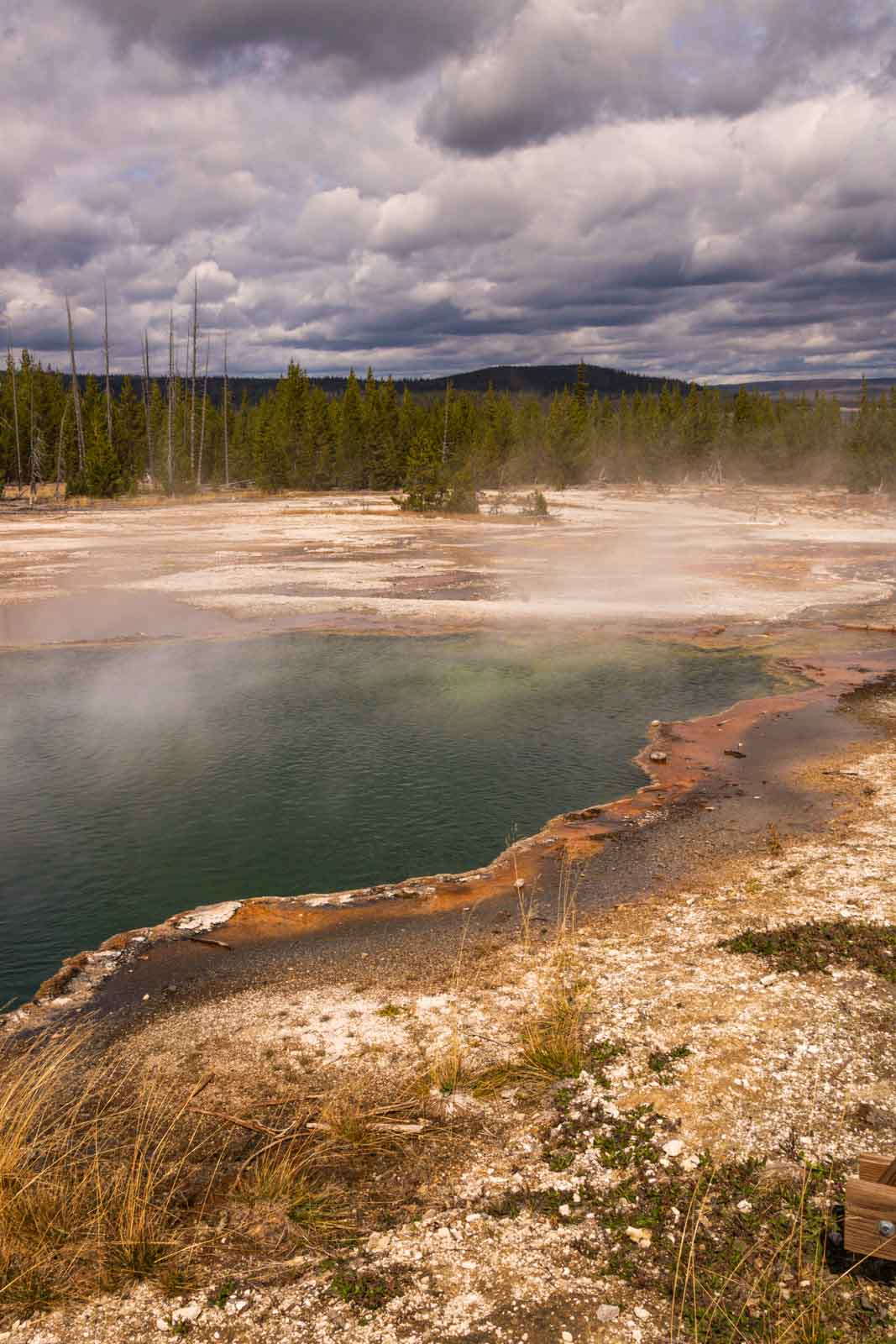 West Thumb Geyser Basin should be added to your list of things to do in Yellowstone