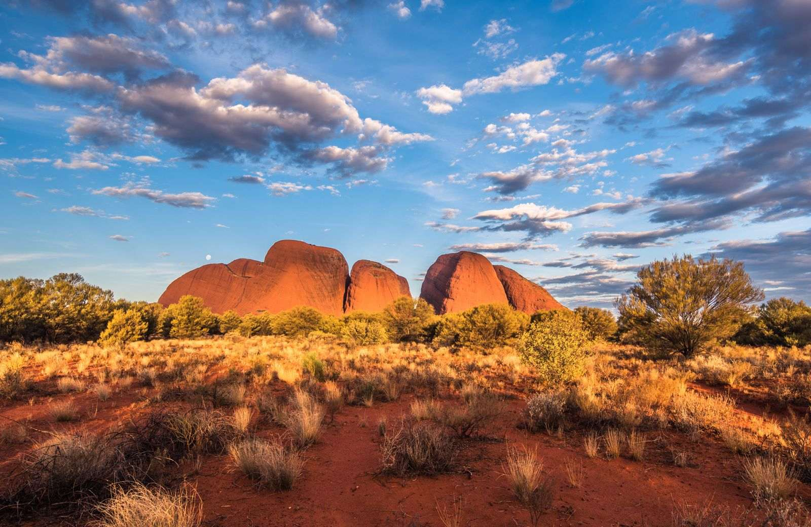 Australia is the perfect place to get a working holiday visa for Canadians.