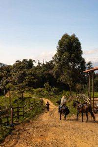 A horse trail in La Cueva del Esplendor.