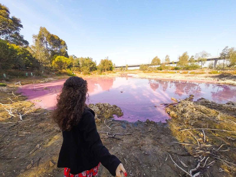 Watching Pink lake is one of the cheap things to do in Melbourne.