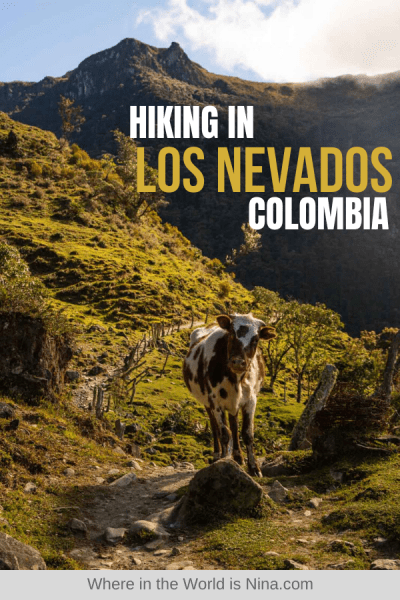 Hiking in Los Nevados National Park in Colombia