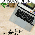 How to Teach Any Language Online
