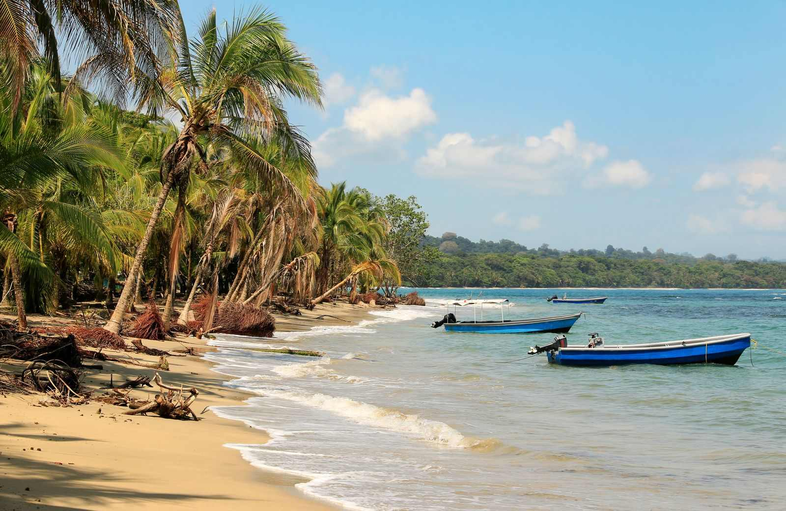 Epic and Adventurous Things To Do In Puerto Limon, Costa Rica