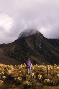 Paramillo del Quindio is a perfect hike in the Los Nevados National Park.