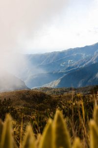 We did an epic three day Los Nevados trek through landscapes we didn't even think existed in Colombia.