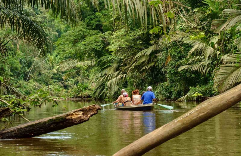 Are you looking for things to do in Puerto Limon? Add Tortuguero National Park to your list.
