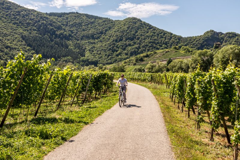 Ahr Valley is a popular wine destination to stop at on your road trip in Germany.