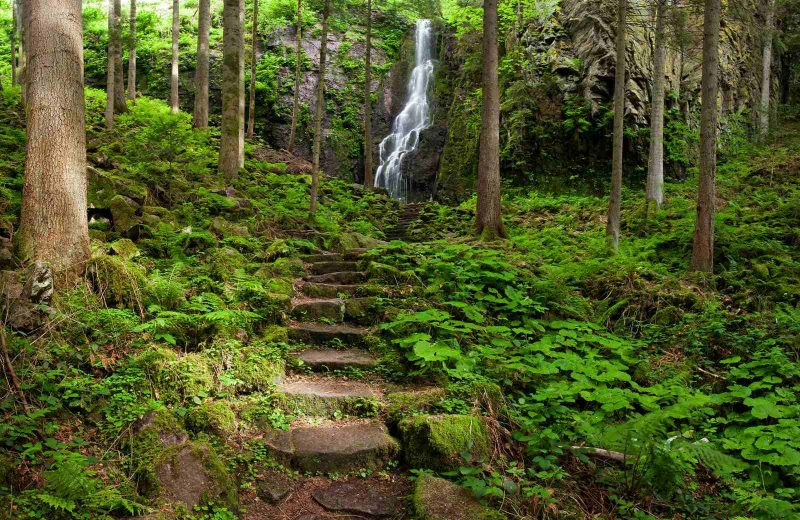 When you're on your Germany road trip in the Black Forest, make sure to stop at the Burgbach Waterfall.