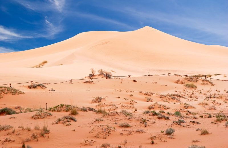 Coral Pink Sand Dunes National Park is a very scenic area to explore on your Utah adventures.