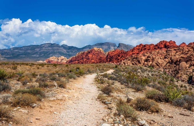 Be sure to take advantage of the hiking at Red Rock State Park on your Nevada road trip.