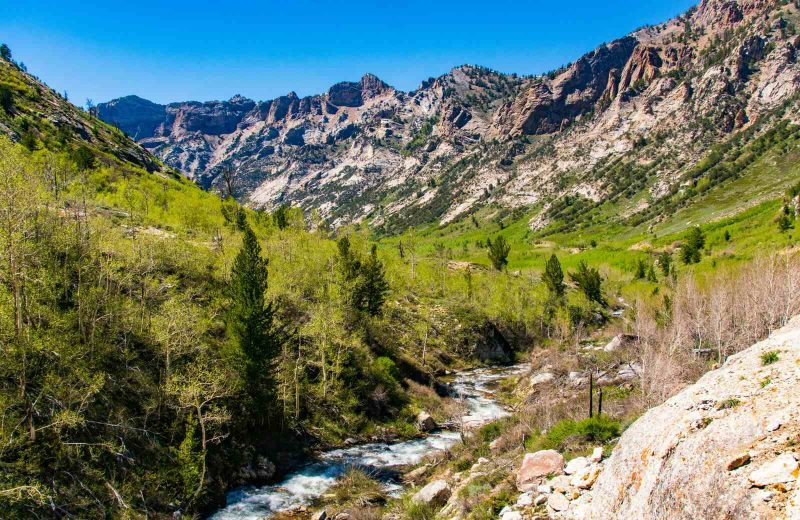 Lamoille Canyon scenic drive - One of the best ways to see the area and the canyon is to drive the beautiful 12-mile scenic byway directly through the canyon for some incredible vistas of the snow-capped Ruby Mountains.