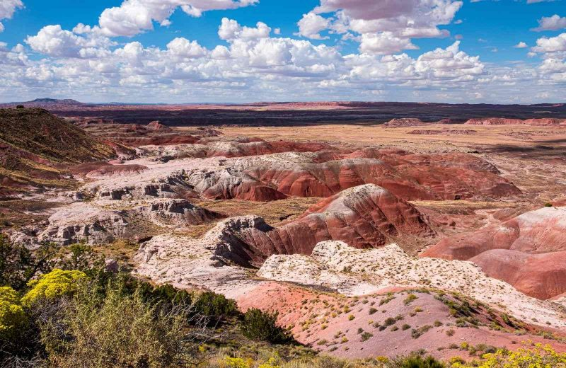 An Arizona adventure can't be complete without visiting the Painted Desert.