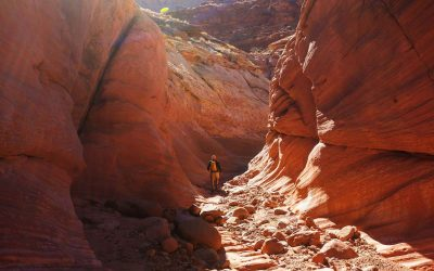 Your Adventurous Utah Road Trip!