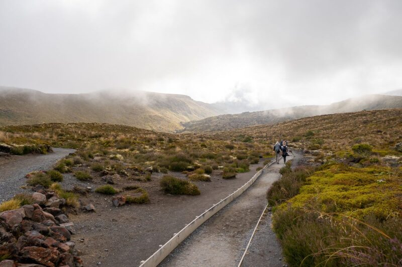 Foggy trail through rugged landscape at the beginning of the Tongariro Alpine Crossing Hike in New Zealand