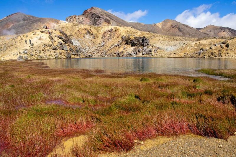 Lake with colorful grasses in foreground and rocky hill in background on the Tongariro Alpine Crossing hike