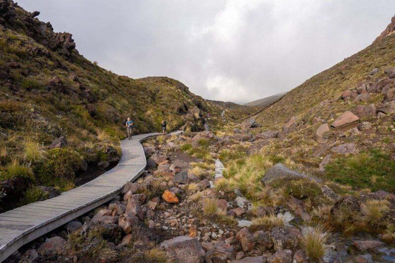 Boardwalk hiking trail through volcanic rock covered in moss on the Tongariro Alpine Crossing hike