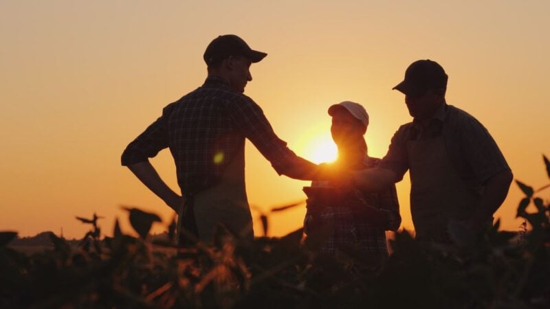 Three people in shadow with sun setting behind them - working on farms is a great way to get a job abroad