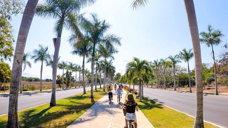 People biking on path past palm trees in Puerto Vallarta - taking a day trip there is one of the things to do in Sayulita