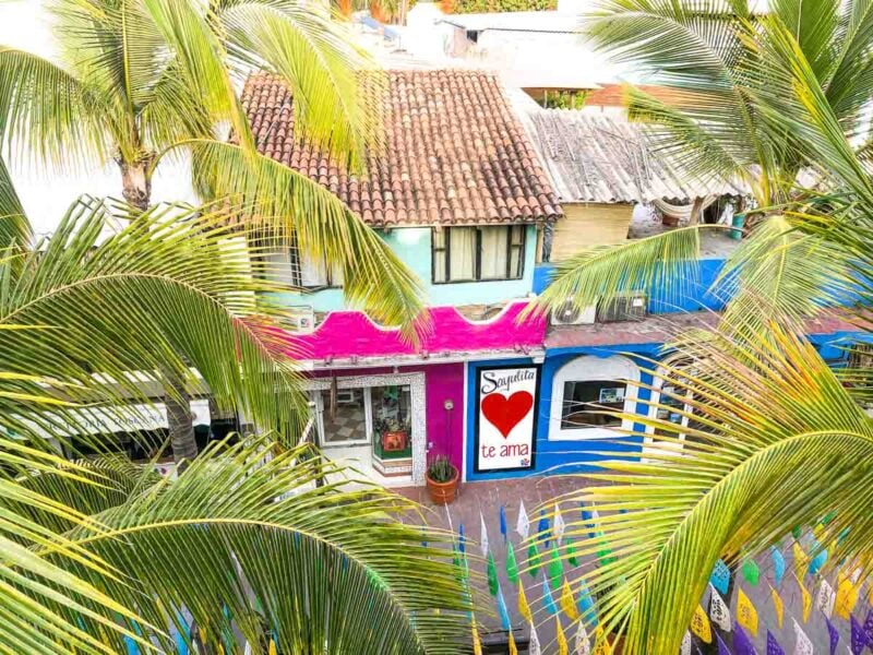 View over colorful houses with palms in foreground in Sayulita