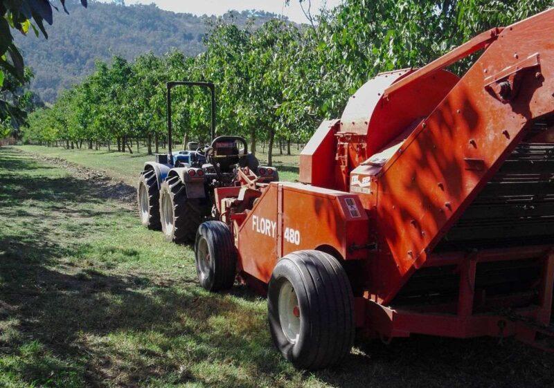 Walnut picking machinery with walnut trees in the background on a walnut farm in Australia