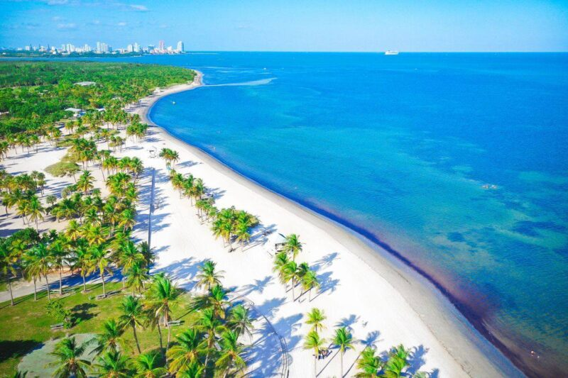 Aerial view of Miami Beach and ocean with palm trees on the beach