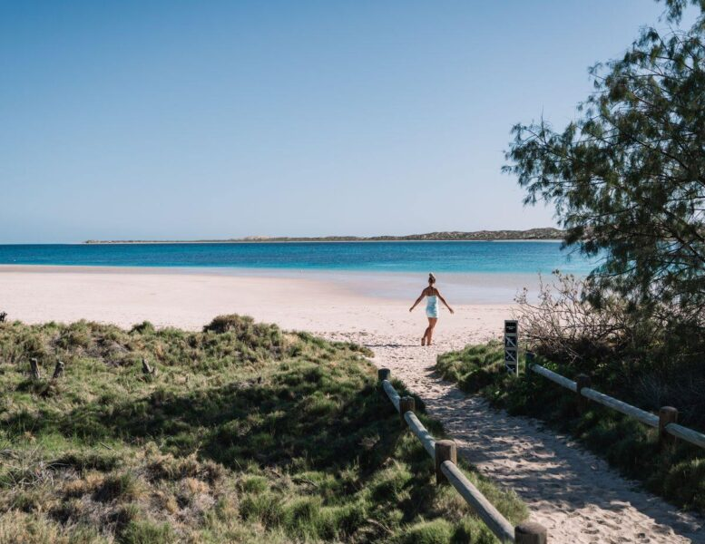 Beach and ocean with path to beach through greenery and person walking on sand