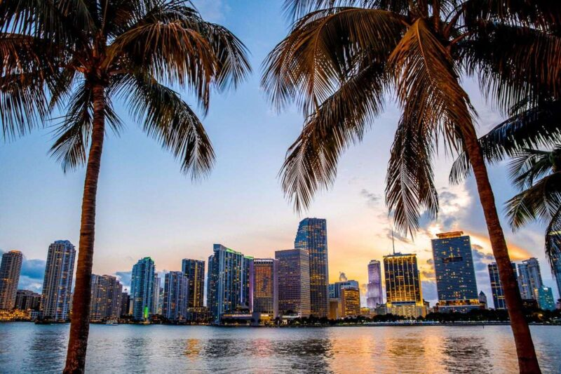 Skyline with ocean in front of it and palm trees in foreground at sunset in Miami