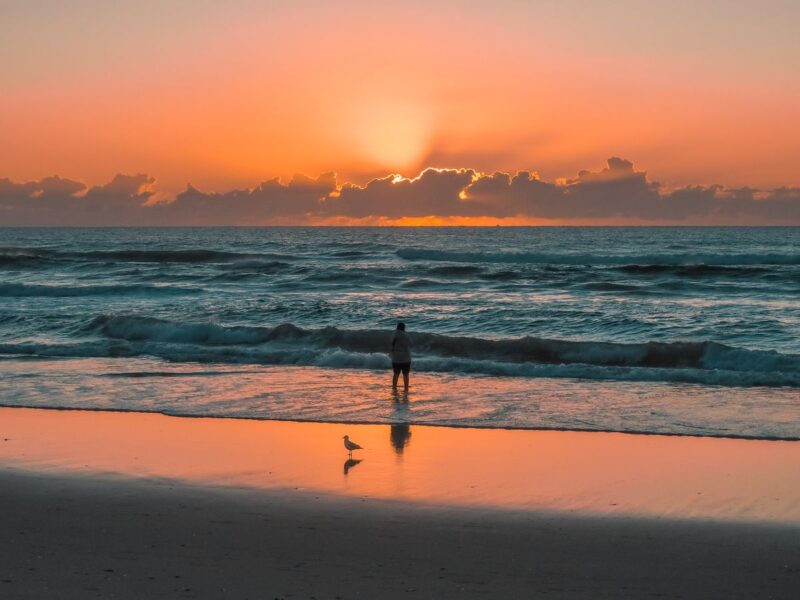 Sunrise over water at Surfers Paradise with person and seagull standing in the water - one of the best things to do on the Gold Coast
