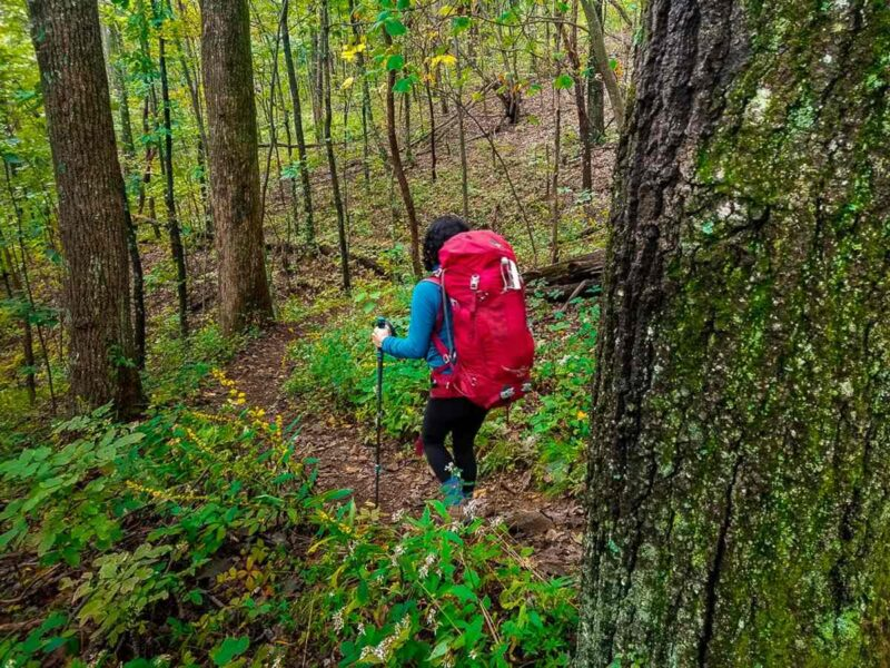 Women hiking on trail with red backpack on in the forest on the Three Ridges Hike - one of the best hikes near DC