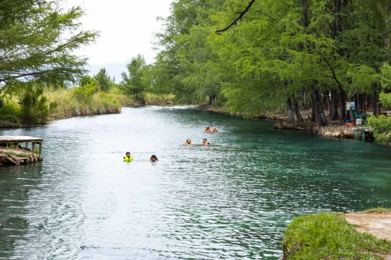 People swimming in the Media Luna cenote surrounded by green foliage in Huasteca Potosina