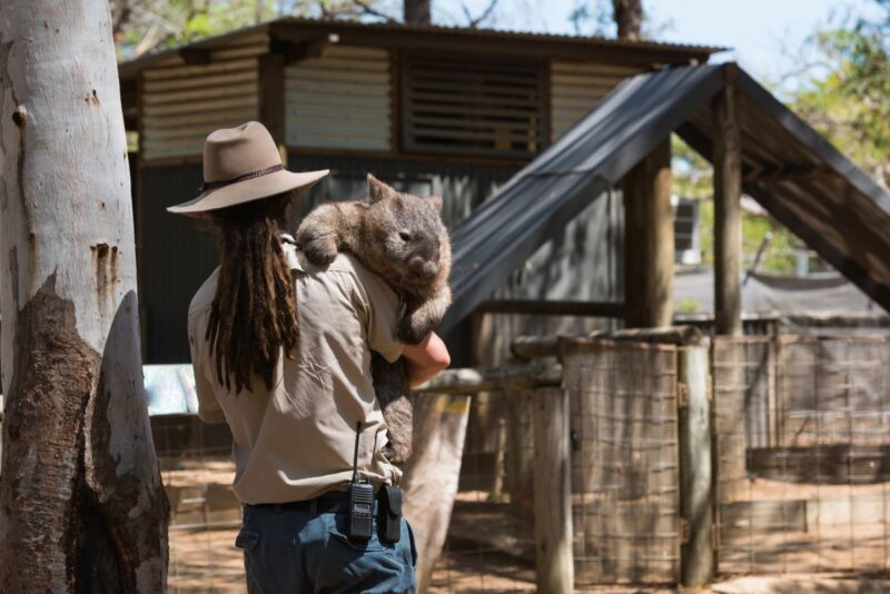 A visit to Australia Zoo is just one of the things to do on the Sunshine Coast
