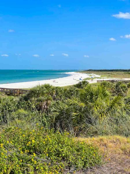 View of the beach and bushes in Fort De Soto Park