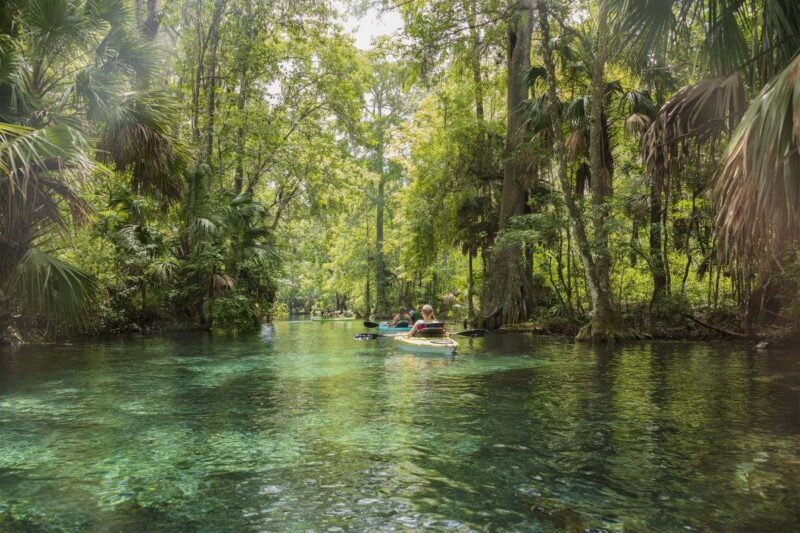 People kayaking down the river in Silver Springs State Park near Tampa Florida