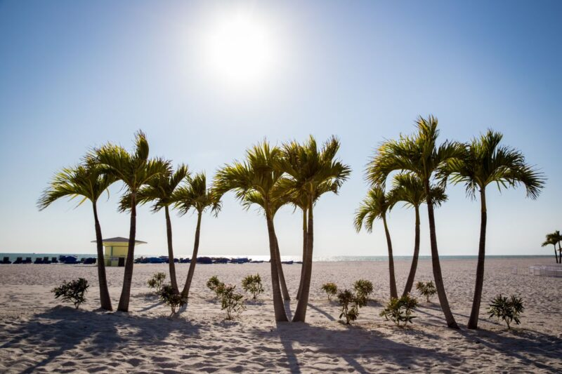 Things to do near Tampa Florida