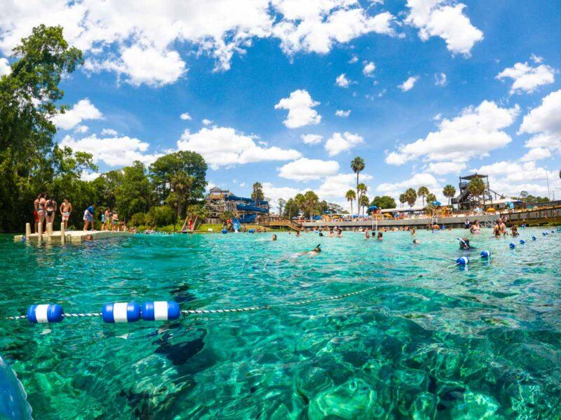 Swimmers at Weeki Wachee Springs near Tampa Florida